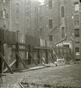 Backcourt garden showing tenements in background
