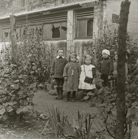 Group of children in backcourt garden